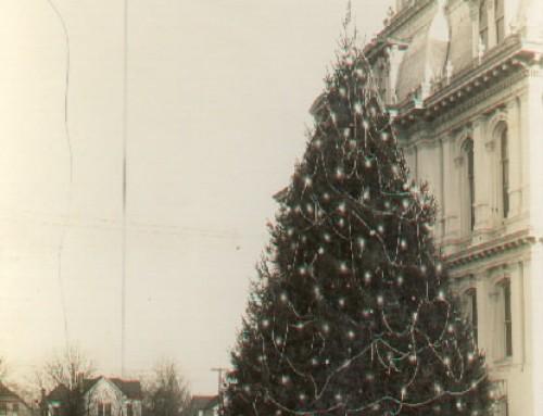 Salem's Outdoor Christmas Tree