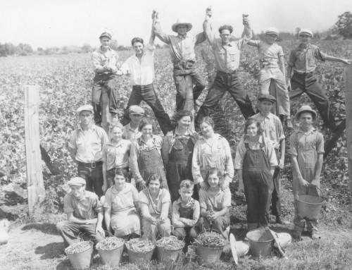 Beans Delayed Start of Salem Schools in 1953