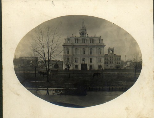 Love Under Electric Lights